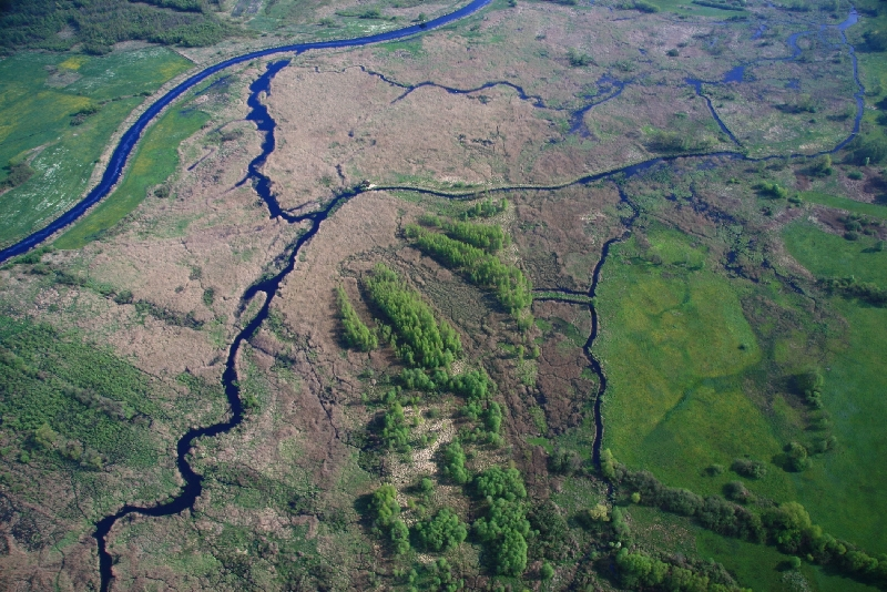 Narew river – airphoto of the restored stretch below Rzędziany village (photo: Andrzej Bielonko)