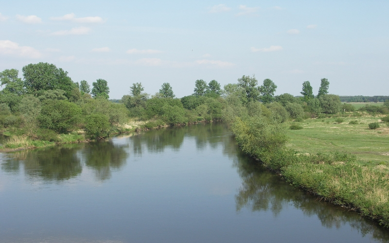 Warta river – the end part of the restored stretch near Ląd village (photo: Mateusz Stelmaszczyk)
